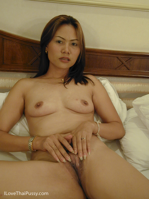 Free mature thai pussy